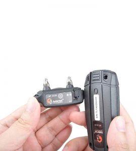 Vue des parties du collier à mettre en contact pour la synchronisation du collier de dressage avec la télécommande.