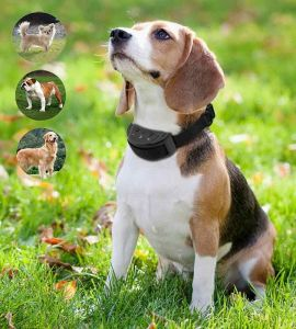collare per cani elettrico anti corteccia