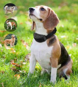 collar de perro eléctrico anti corteza