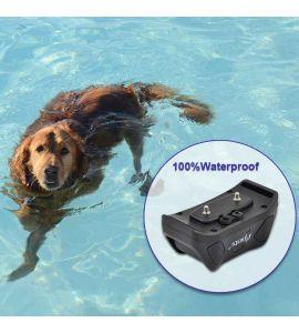 Votre chien peut utiliser le collier de dressage Pet6217 dans l'eau.