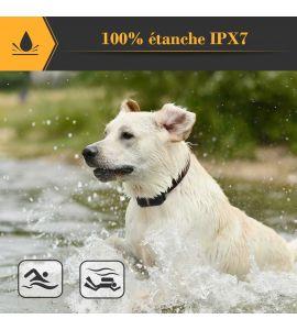 Le collier anti aboiement  PET 856 est étanche IPX7