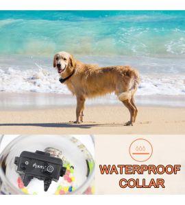 Pet619-1 Compact and Ergonomic Training Collar