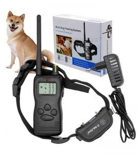 Training kit PET900B  rechargeable and waterproof receiver