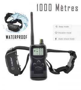 Collo d'addestramento 1000 metri PET900B