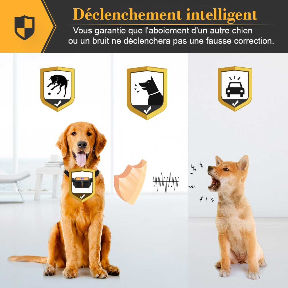 Collier anti aboiement à déclenchement intelligent