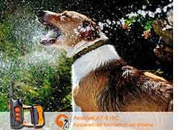 collier de dressage et anti aboiement pas cher pour chien de taille moyen et grande taille