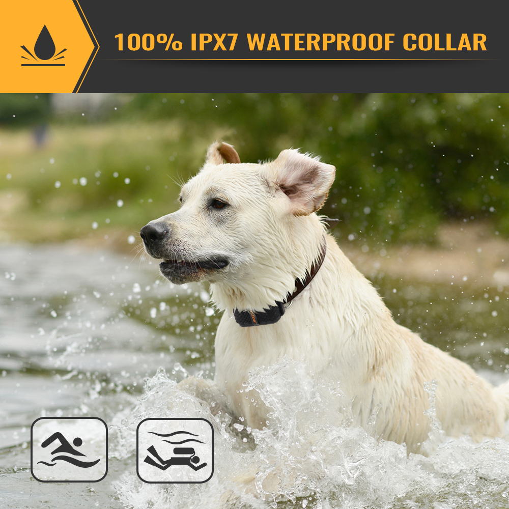 IPX7 waterproof collar