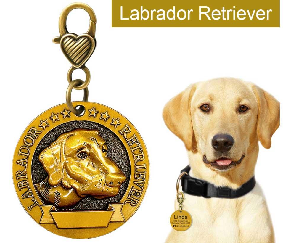 Médaille pour  chien race labrador
